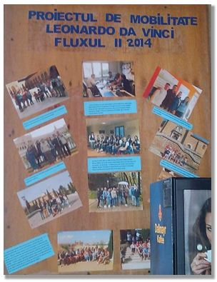 Panou Flux Mobilitate