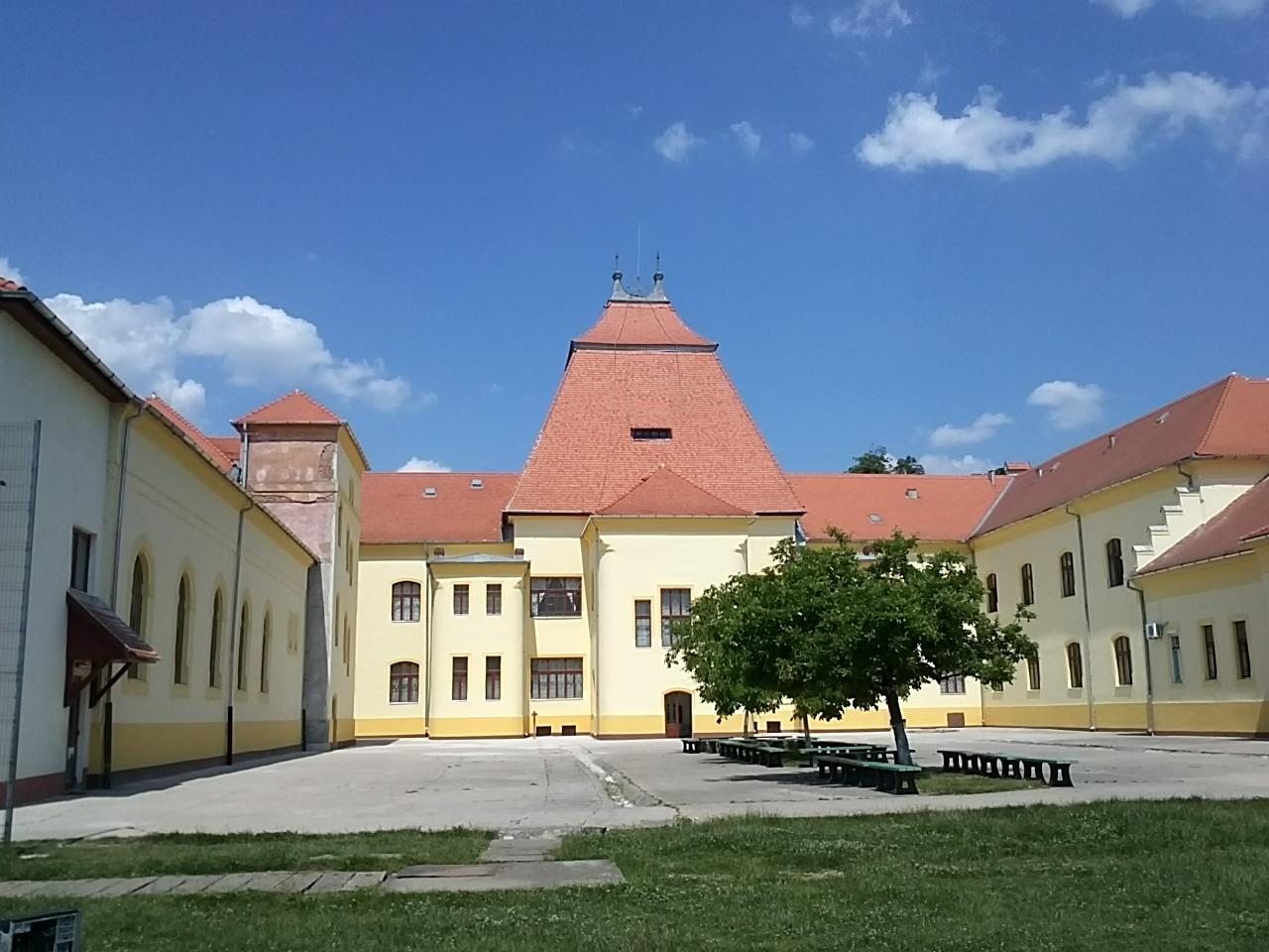 "Colegiul Național ""Teodor Neș"""